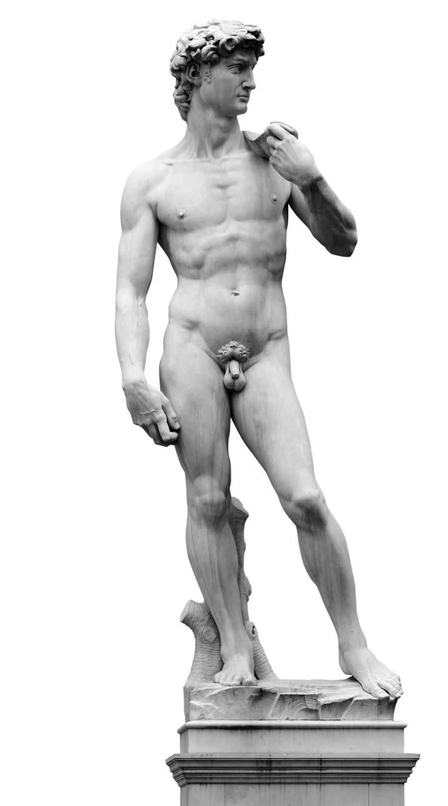 david marmor